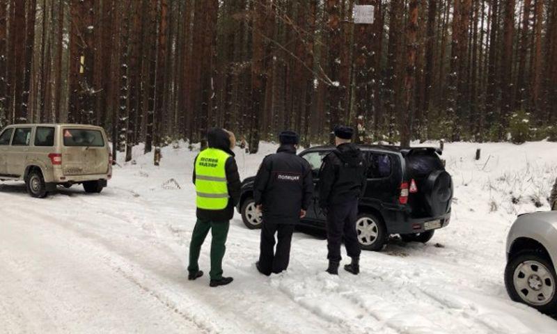 Перед Новым годом в Ярославской области продали более трех тысяч елок