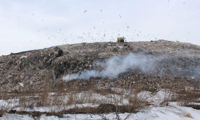 Основная версия возгорания на мусорном полигоне под Ярославлем – поджог