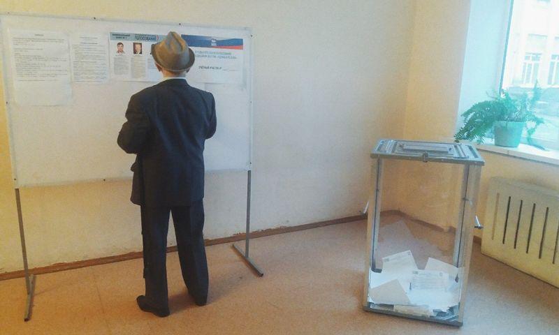 Стали известны предварительные результаты праймериз в Ярославле