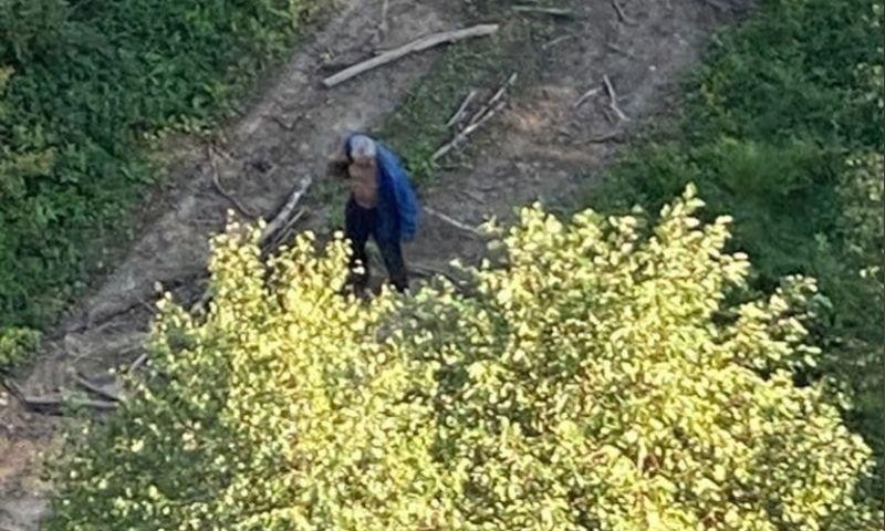 «Ежегодные поиски дяди Вани»: в Ярославской области с помощью вертолета нашли заблудившегося грибника