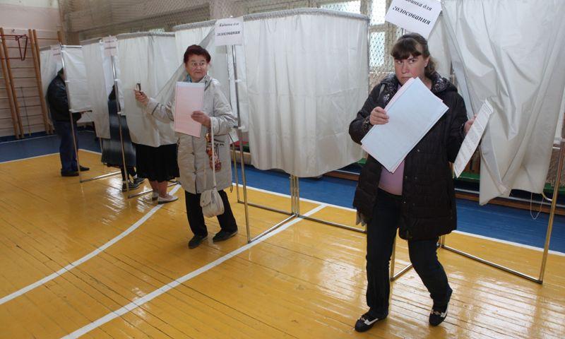Медведица Маша угадала явку на выборах в Ярославле