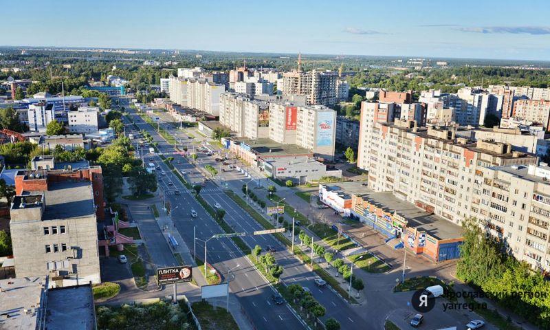 В Ярославле посадят несколько десятков лип