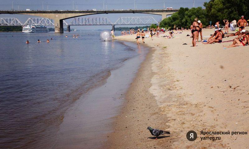 Названы места в Ярославле, где запрещено купание