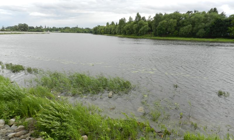 Подробности страшной трагедии: пенсионер зашел с трехлетним ребенком в водоем