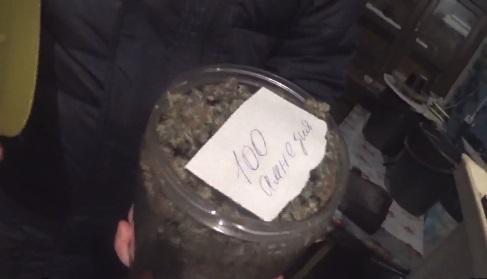 Под Рыбинском у «садовода» изъяли более килограмма марихуаны