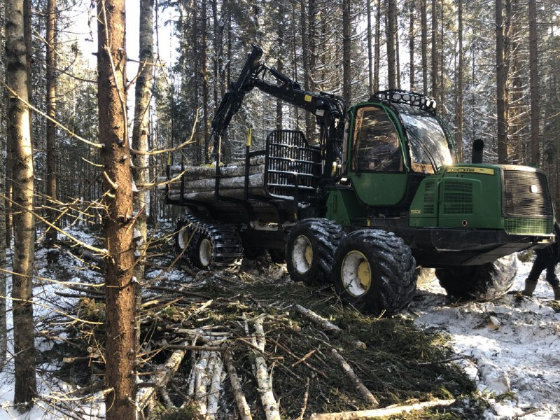 В Ярославской области при рубке леса используют уникальную технику