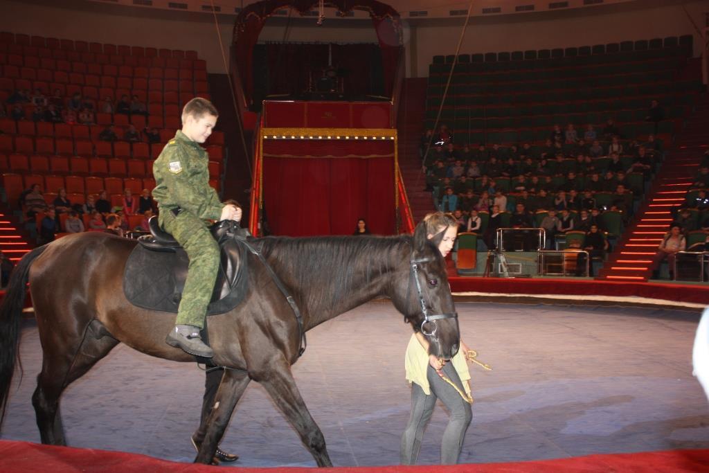 Более 600 ярославских школьников побывали на открытой репетиции циркового шоу «Инди Ра»