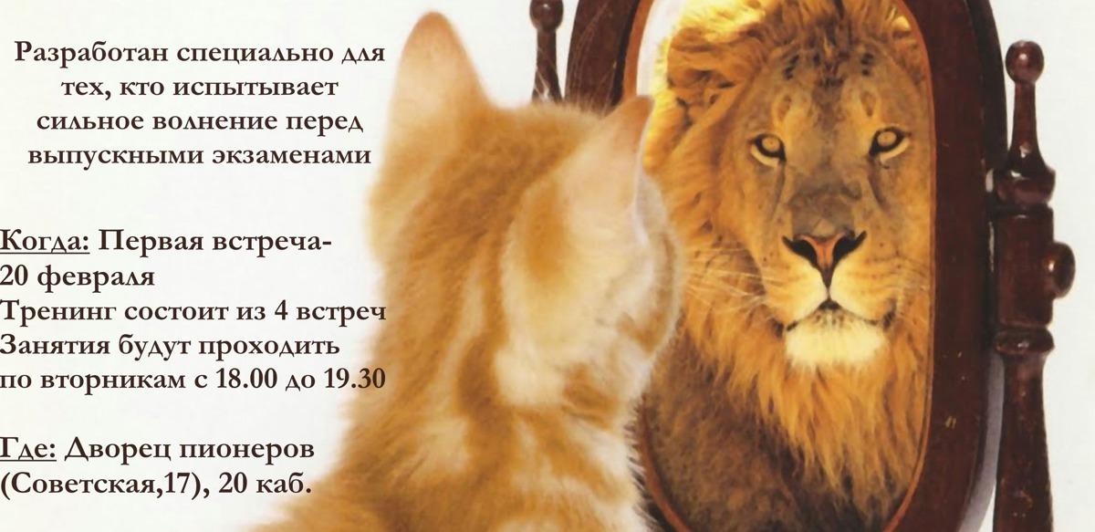 Ярославских школьников приглашают на бесплатный тренинг «Я не боюсь ЕГЭ»