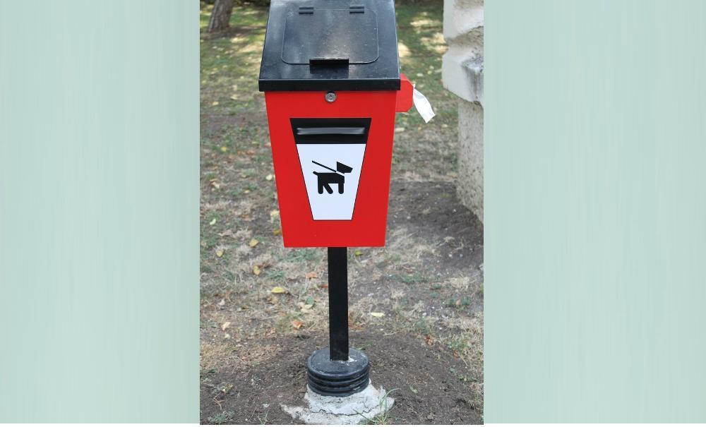 От собачьих экскрементов спасут только жесткие меры – авторская колонка