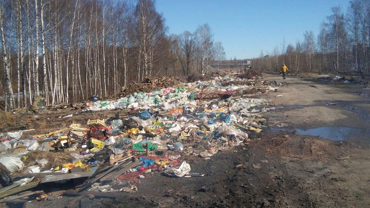 В Красноперекопском районе Ярославля выявлены три несанкционированные свалки