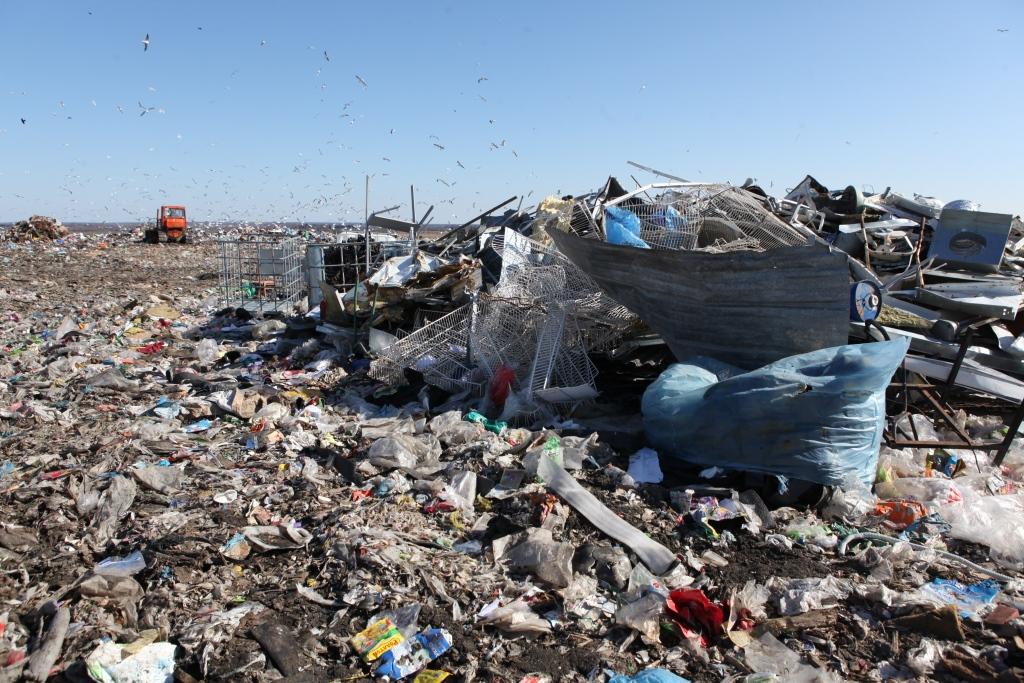 Состояние воздуха, воды и почвы в санитарно-защитной зоне ОАО «Скоково» проверяется ежеквартально