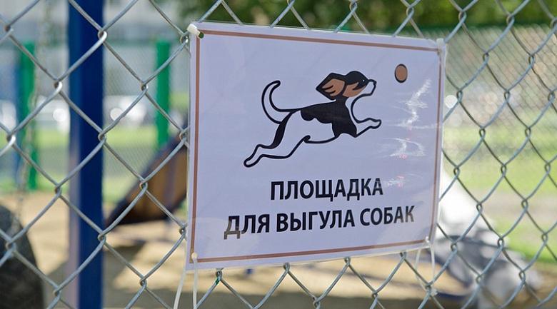 В Ярославле определили предварительный список мест для выгула собак: адреса