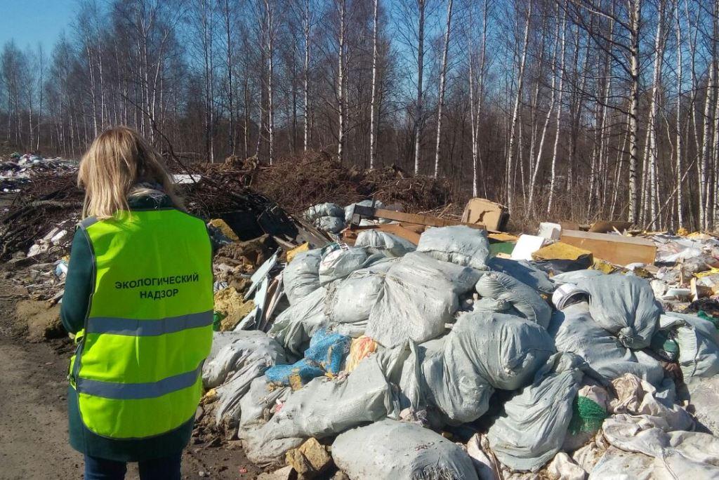 100 миллионов рублей планируют направить на ликвидацию несанкционированных свалок в Ярославской области