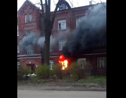 В крупном пожаре в Ярославле погибли домашние животные