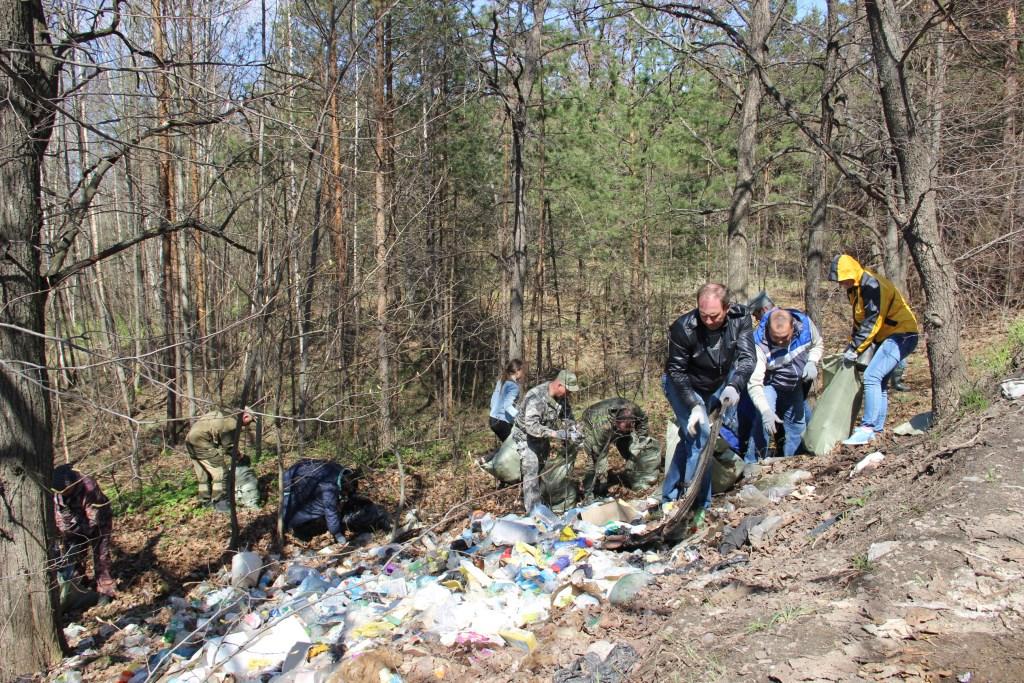 В лесах Ярославской области ликвидировано 18 несанкционированных свалок