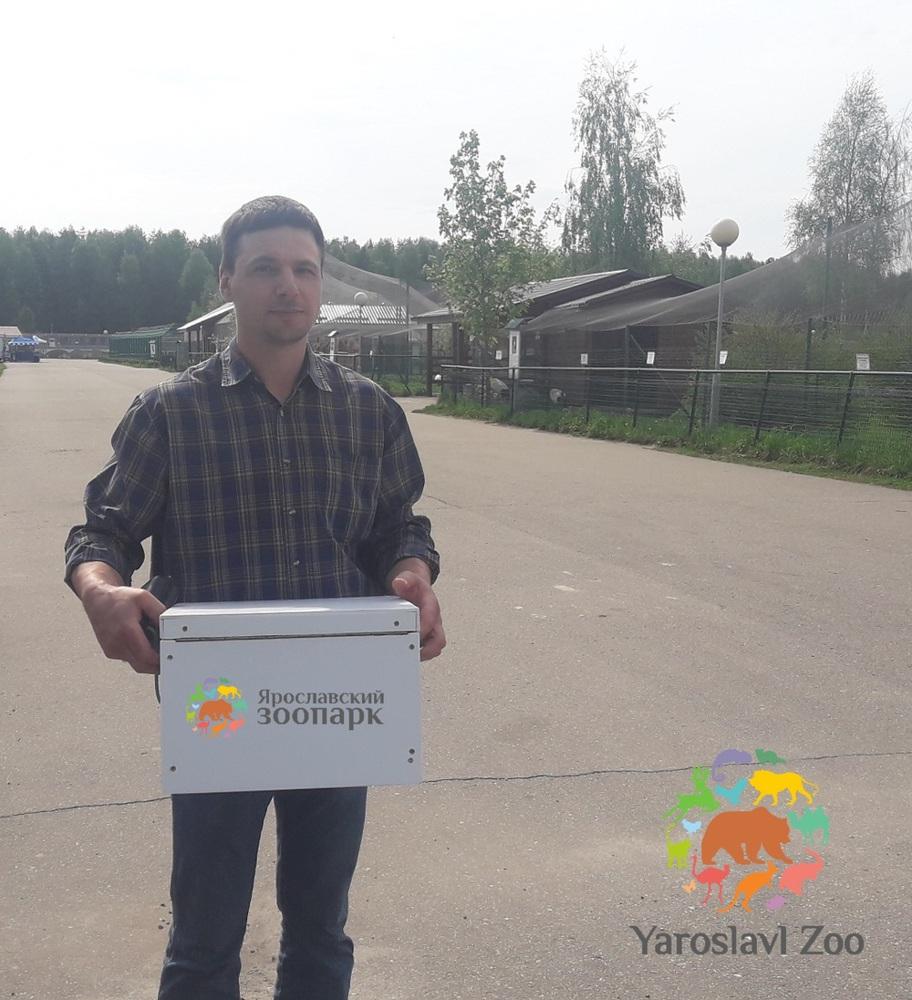 Ярославский зоопарк передал яйца редких птиц Окскому государственному заповеднику