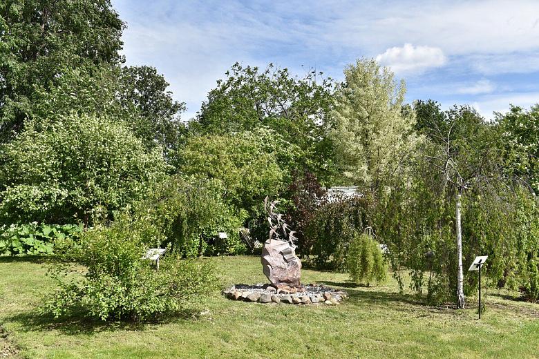 В ярославском саду высадят аллею городов Золотого кольца