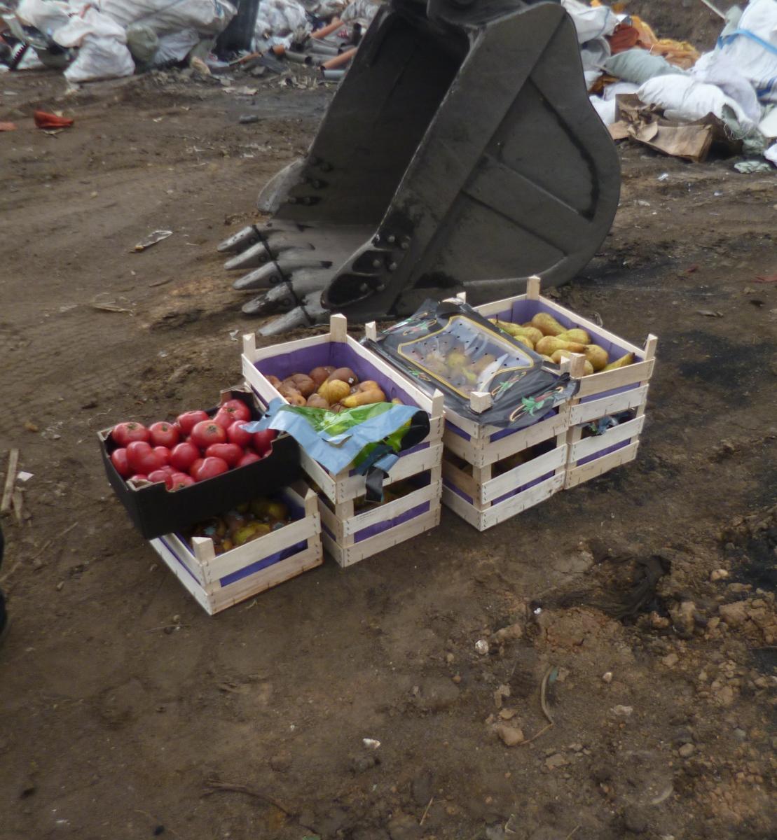 В Ярославле уничтожили 85 килограммов санкционных груш и томатов