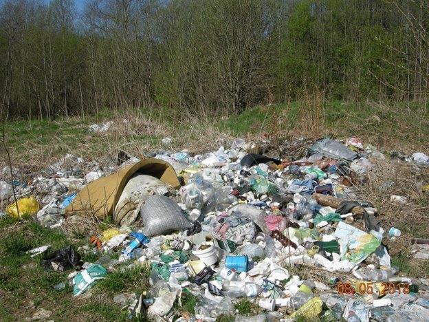 В Ярославской области ликвидировали три несанкционированные свалки