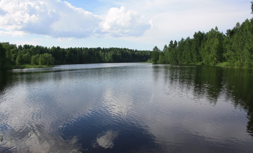 В центре водного спорта «Ветрено» пройдет Кубок России по плаванию на открытой воде