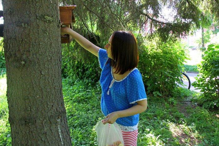 В парке в центре Рыбинска для белок установили домики