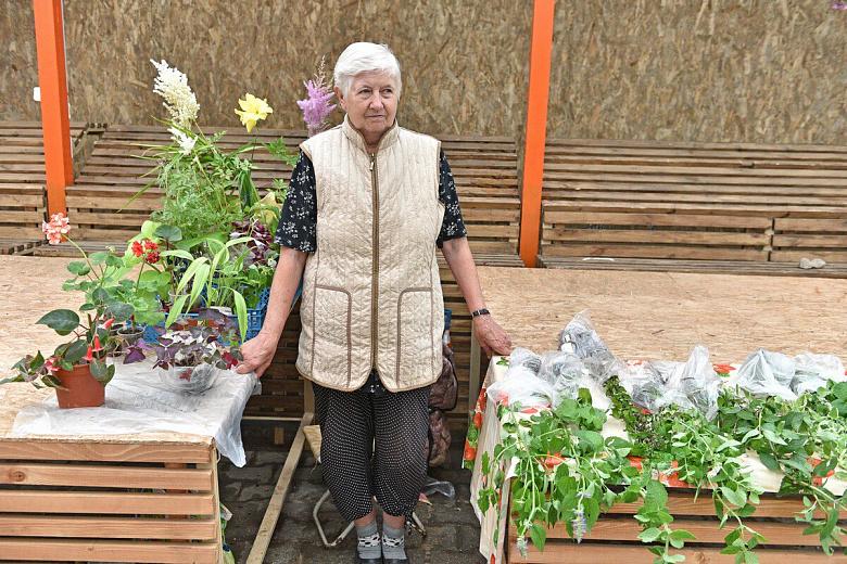 В Ярославле пенсионерам выделили 150 мест для торговли на рынках