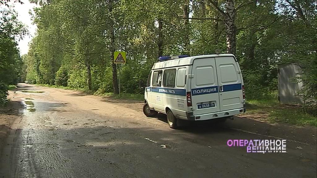 Ярославцев просят помочь в поиске убийцы мамы двоих детей