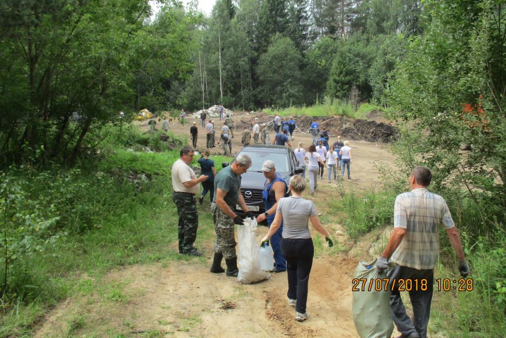 В лесах Ярославской области ликвидировано 67 крупных несанкционированных свалок