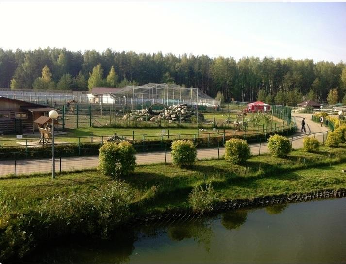 Слоновник и вертолетная площадка могут появиться в Ярославском зоопарке
