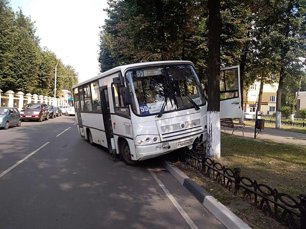 В Ярославле маршрутка с пассажирами вылетела с дороги и врезалась в дерево
