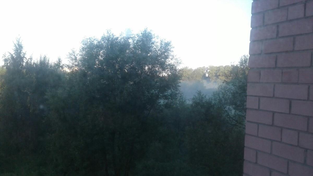 Ярославцы жалуются на запах гари: что горит
