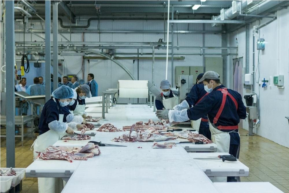 В Ярославской области погибла сотрудница птицефабрики, упав в ванну охлаждения субпродуктов