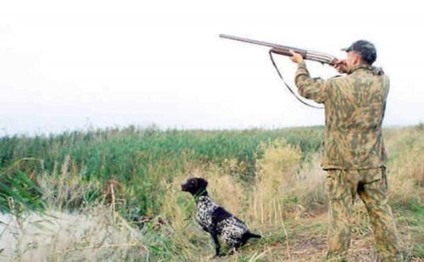 С начала августа более 300 ярославцев получили через портал госуслуг разрешения на охоту