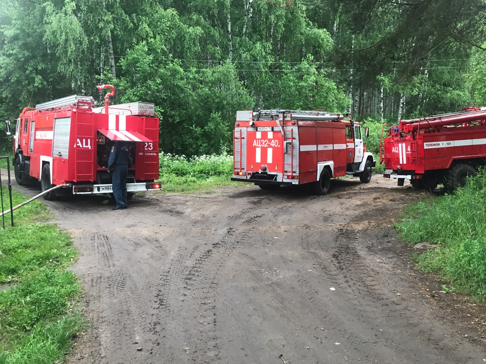 В Ярославской области обнаружили лесной пожар