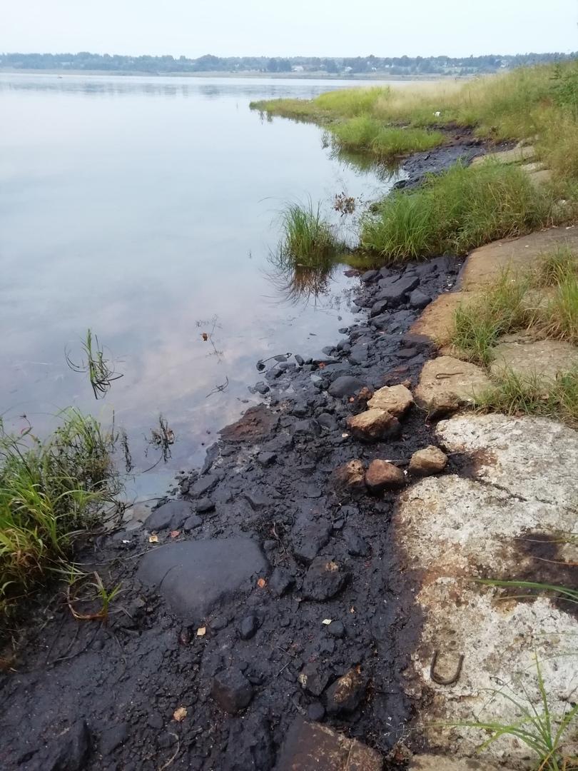 В Ярославской области проверяют информацию о загрязнении Волги недалеко от ЯНПЗ