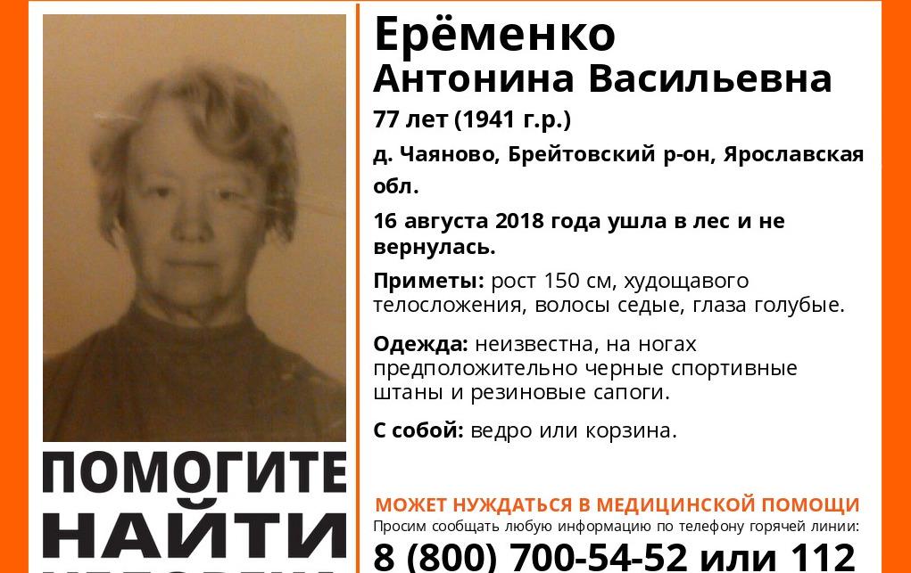 В Ярославской области полмесяца ищут пропавшую пенсионерку