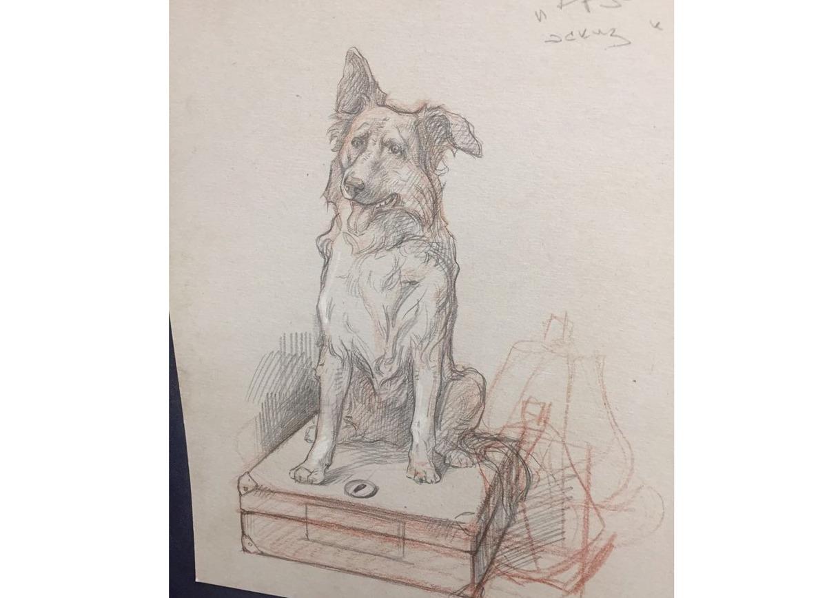 В Ярославской области установят скульптуру-копилку в честь собаки
