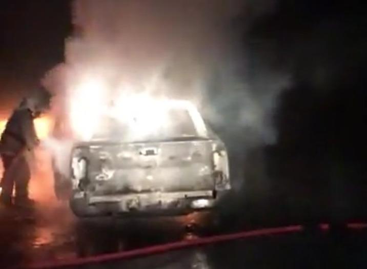 В Ярославской области из-за лося столкнулись и сгорели две иномарки: видео