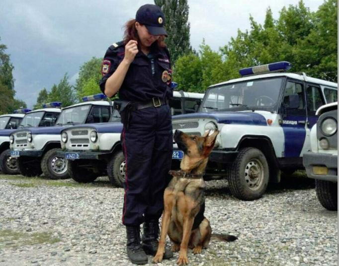 В Ярославле полицейская собака выследила опасного грабителя