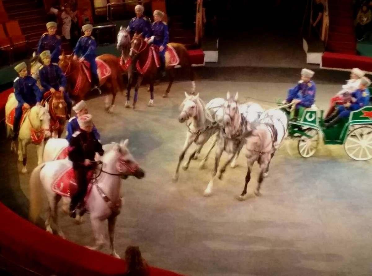 Полтысячи ярославцев в выходные бесплатно посетили цирк