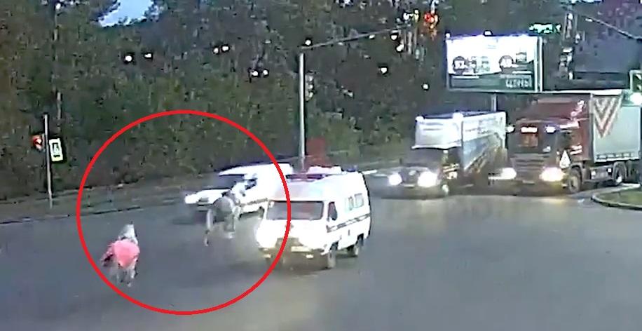 На Московском проспекте в Ярославле сбежавшие лошади едва не спровоцировали массовое ДТП: видео