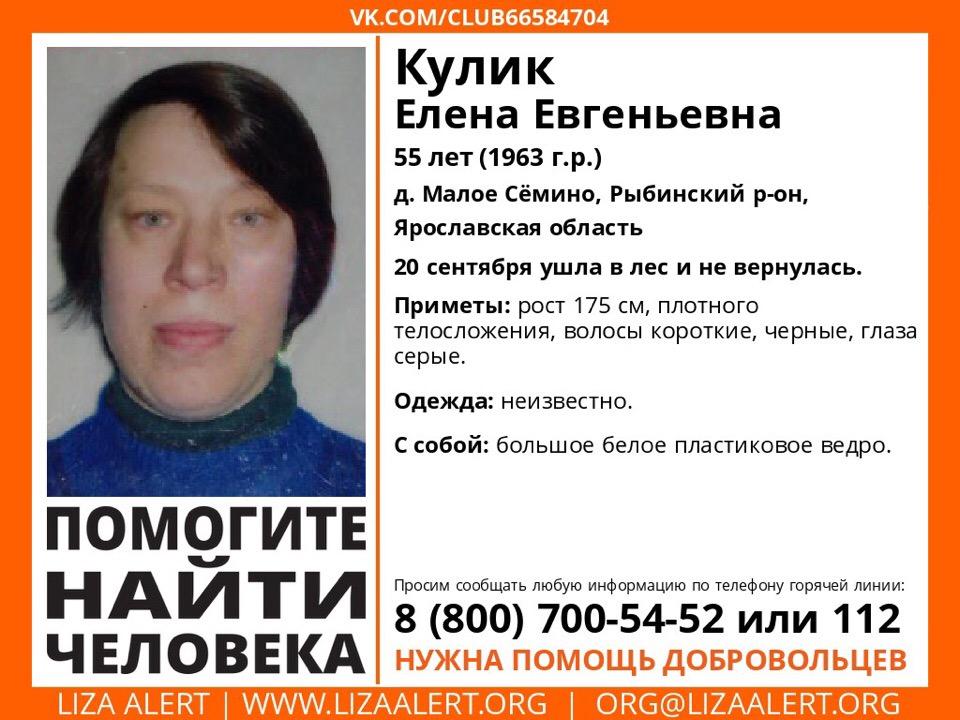 В лесу под Рыбинском пропала 55-летняя женщина