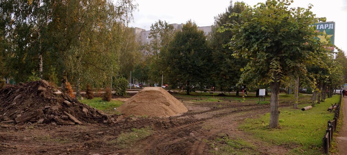 Пропавшие из сквера военных финансистов в Ярославле саженцы яблонь так и не нашлись