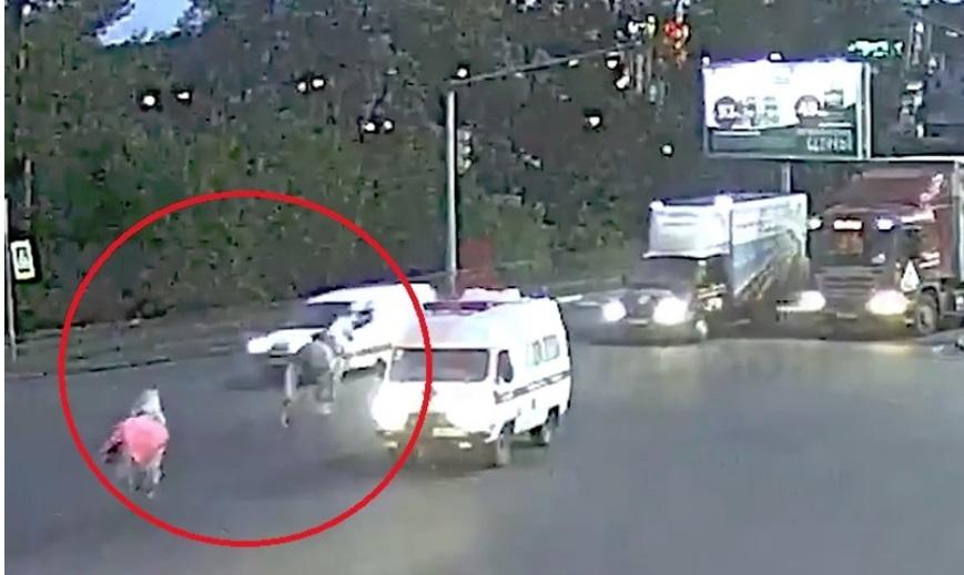 Полицейские нашли владелицу лошадей, спровоцировавших ДТП на Московском проспекте