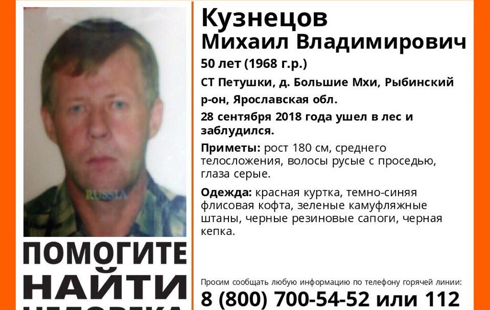 В Рыбинском районе в лесу пропали два грибника