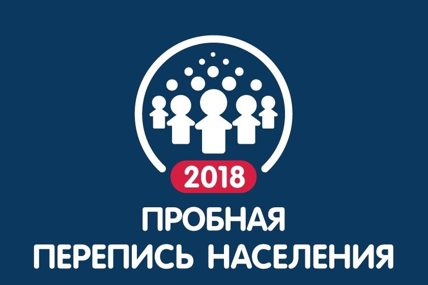 Жители региона могут принять участие в пробной переписи населения через портал госуслуг