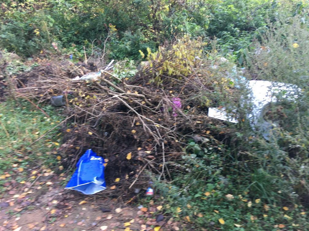 Руководство кладбищ за Волгой накажут за отсутствие туалетов и мусорок