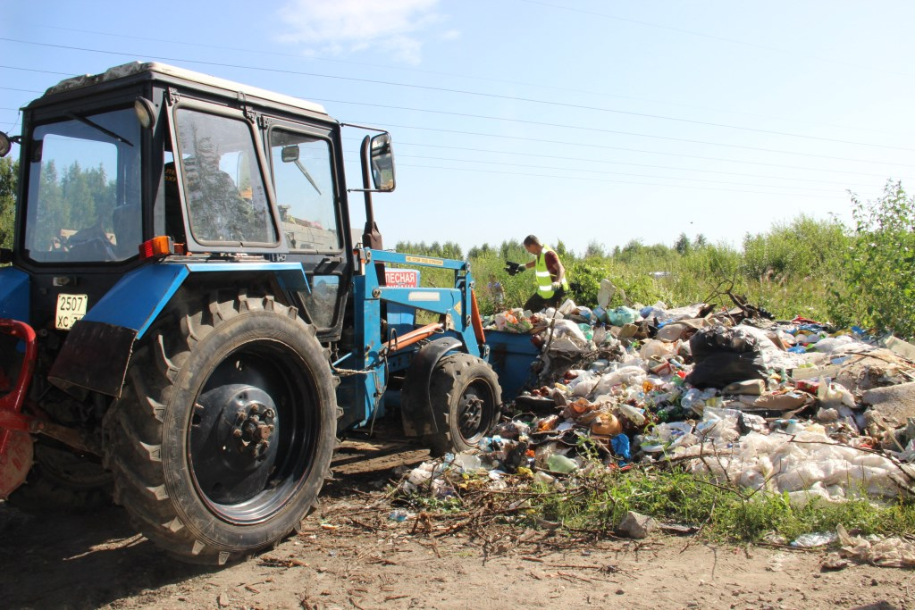В лесах Ярославской области ликвидировали почти 200 несанкционированных свалок