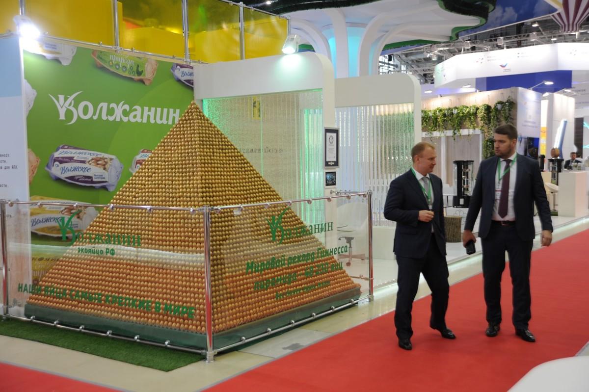 Пирамида из яиц ярославского предприятия занесена в Книгу рекордов Гиннесса: фото