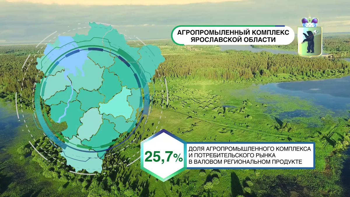 На выставке «Золотая осень» показали презентационный ролик Ярославской области: видео